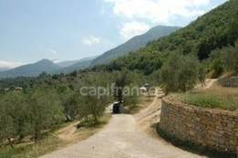 Vente - Camping - Vaucluse (84)