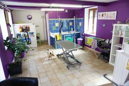 Vente - Animalerie - Salon de toilettage - Vernon (27200)