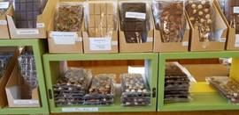 Vente - Chocolaterie - Indre (36)