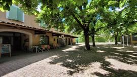 Vente - Bar - Hôtel - Restaurant - Alpes-de-Haute-Provence (04)