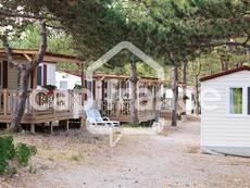 Vente - Camping - Charente-Maritime (17)